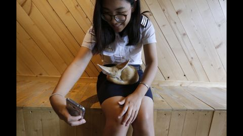 A girl takes a selfie with a fennec fox at the Little Zoo Cafe, on the outskirts of Bangkok, Thailand, on Monday, March 7.