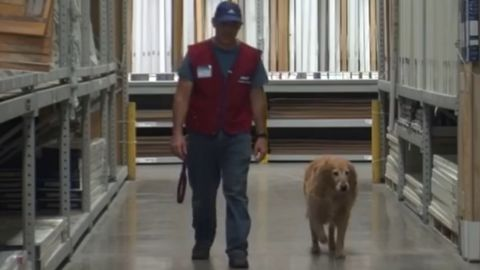 """""""Instead of medications, I have Charlotte,"""" Clay Luthy says of his furry friend and co-worker."""