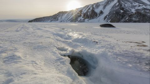 <strong>Seals:</strong> Weddell seals populate McMurdo Sound and, from a distance, can resemble large slugs. They keep holes open along sea ice cracks so that they return to the water when needed. The seals can dive to depths of up to 2,000 feet.