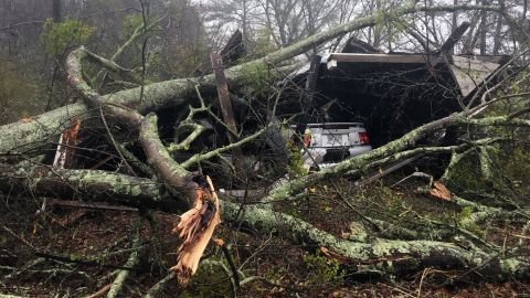 Downed trees rest on a shed near Baxley, Georgia, on January 22.