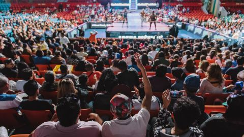 """A fan cheers as Sam Adonis and the """"rudos"""" (bad guys) are defeated by the """"tecnicos."""""""
