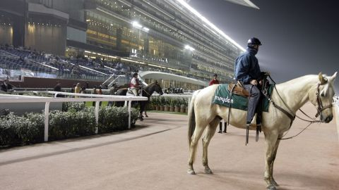 The race takes place in front of the enormous grandstand at the Meydan track.