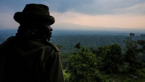 """""""The park brings a lot of different kinds of services that are benefiting the community,"""" Katembo told CNN. <br /><br />""""For instance you have the protected fisheries where many fishermen are able to sustain their families and are able to have income generation.""""<br /><br />Pictured, a ranger looks out over Virunga."""