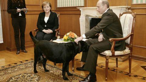 Putin (R) pats his dog Koni in Merkel's presence, in Sochi on January 21, 2007.