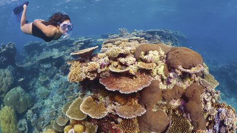 The new funding  represents the single largest investment for reef conservation and management in Australia's history.