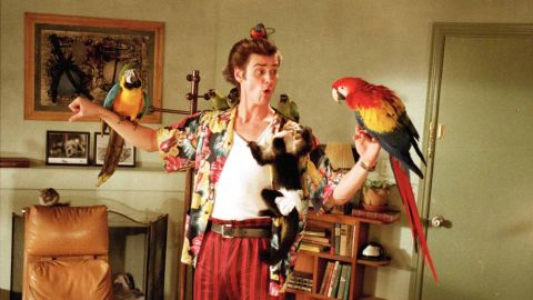 """<strong>""""Ace Ventura: Pet Detective"""":</strong> Jim Carrey stars as a rambunctious wildlife detective who tries to aid the search for the Miami Dolphins' missing mascot. <strong>(Hulu) </strong>"""