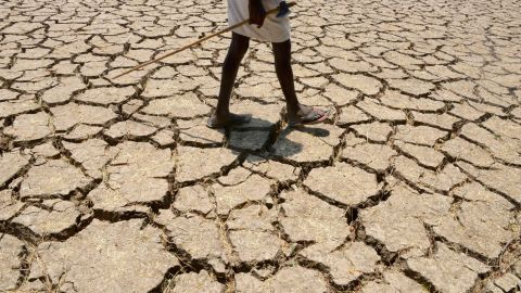 """An Indian farmer in a dried up cotton field in the southern Indian state of Telangana, in April 2016. Much of India is <a href=""""http://edition.cnn.com/2016/05/04/asia/gallery/india-drought-crisis/index.html"""">reeling</a> from a heat wave and severe drought conditions that have decimated crops, killed livestock and left at least 330 million people without enough water for their daily needs."""