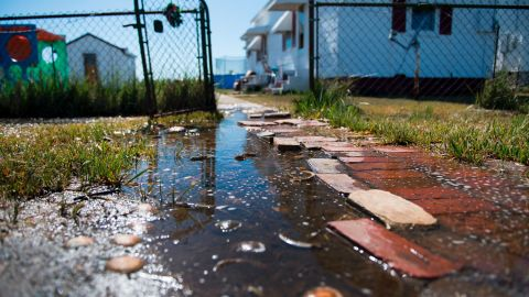 """Sea water collects in front of a home in Tangier, Virginia, in May 2017. Tangier Island in Chesapeake Bay has lost two-thirds of its landmass since 1850. Now, the 1.2 square mile island is suffering from floods and erosion and is slowly sinking. A <a href=""""https://www.nature.com/articles/srep17890"""" target=""""_blank"""" target=""""_blank"""">paper</a> published in the journal Scientific Reports states that """"the citizens of Tangier may become among the first climate change refugees in the continental USA."""""""