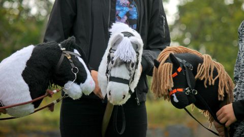 """""""My favorite thing is the community,"""" says Elsa Salo, one of the stars of Hobbyhorse Revolution."""