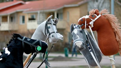 """""""I also like making horses and creating the personalities of the horses, sharing the horses with others and telling other hobbyists about them."""""""