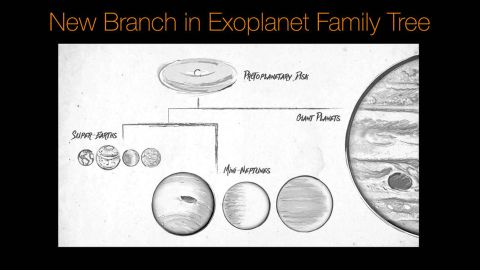 This sketch illustrates a family tree of exoplanets.