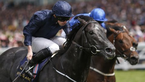 On the track, Ryan Moore, riding the unbeaten Caravaggio, won the Commonwealth Cup. It was Caravaggio's sixth win of his career.
