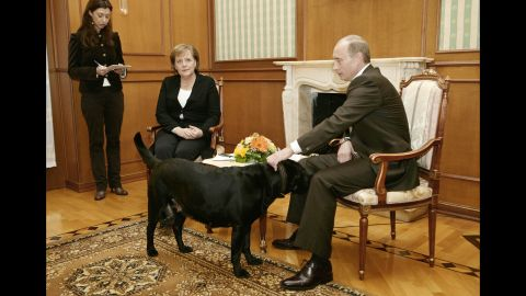 """Putin pets his dog Kuni as he addresses journalists with German Chancellor Angela Merkel in January 2007. Merkel, reportedly fearful of dogs since one attacked her in 1995, was photographed looking distinctly uncomfortable when Putin brought his large black Labrador into the meeting in Sochi, Russia. Years later, <a href=""""http://www.cnn.com/2016/01/12/europe/putin-merkel-scared-dog/index.html"""" target=""""_blank"""">he told the German newspaper Bild</a> he had no intention of intimidating Merkel. """"When I found out that she doesn't like dogs, of course I apologized,"""" he said."""
