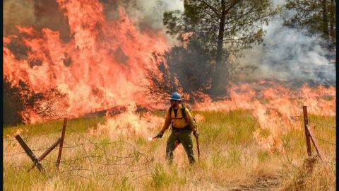 Firefighters battle the Detwiler Fire, which has burned thousands of acres in California, near Yosemite National Park, on Wednesday
