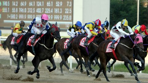 """Attendance figures are already """"right up there with baseball and well ahead of the domestic football league,"""" according to Alastair Middleton of the Korea Racing Authority (KRA.)"""