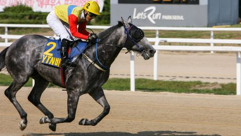 """""""Right now horse racing has a bad perception among some Korean people,"""" Yang Tae Park, executive director of the KRA, told CNN.  """"We are trying to change that perception."""""""