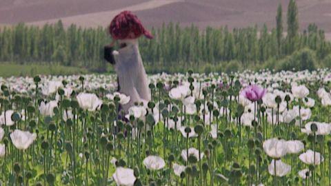 afghanistan drugs declassified ron clip episode 4_00000611.jpg