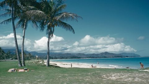 A view of the coastline at Oahu, Hawaii, USA, circa 1960. (Photo by Archive Photos/Getty Images)