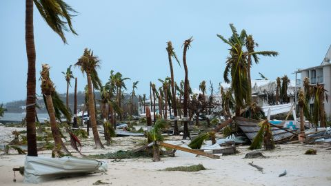 Broken palm trees are scattered on a Marigot beach on September 6.
