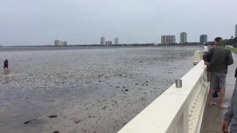 Tampa bay empty orig lc_00000000.jpg