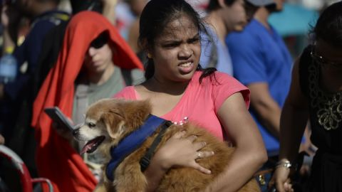 A woman carries a dog at an airport checkpoint in St. Martin on September 11.