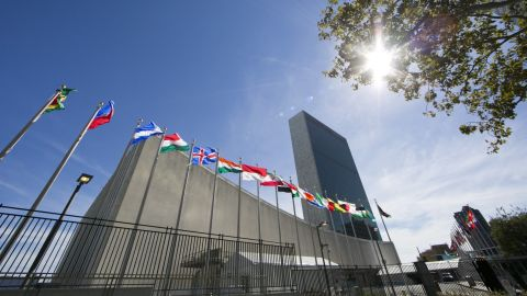International flags fly in front of the United Nations headquarters. Photo credit: DOMINICK REUTER/AFP/Getty Images