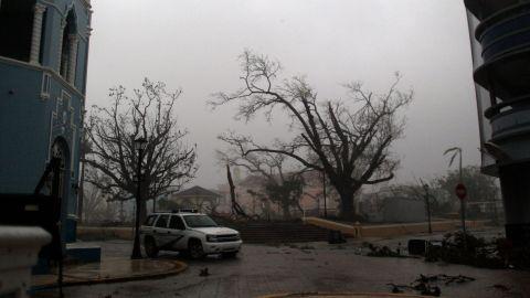 A tree is damaged in Fajardo, Puerto Rico, on September 20.