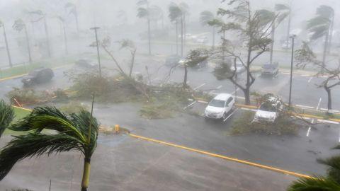 Trees are toppled outside the Roberto Clemente Coliseum in San Juan on September 20.