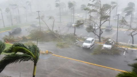 """Trees are toppled in a parking lot at Roberto Clemente Coliseum in San Juan, Puerto Rico, on September 20, 2017, during the passage of the Hurricane Maria.Maria made landfall on Puerto Rico on Wednesday, pummeling the US territory after already killing at least two people on its passage through the Caribbean. The US National Hurricane Center warned of """"large and destructive waves"""" as Maria came ashore near Yabucoa on the southeast coast. / AFP PHOTO / HECTOR RETAMAL        (Photo credit should read HECTOR RETAMAL/AFP/Getty Images)"""
