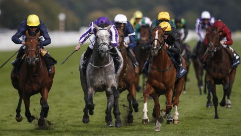 Ryan Moore rode Capri (centre, in purple) to victory in the final British Classic of the year, the St Leger at Doncaster.