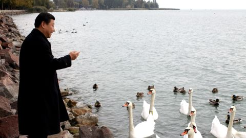 Xi feeds swans during an official visit to Hungary in 2009.
