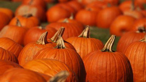 pkg pumpking health benefits food as fuel_00002306.jpg