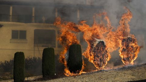 Shrubs burn near a home in Ventura on December 5.