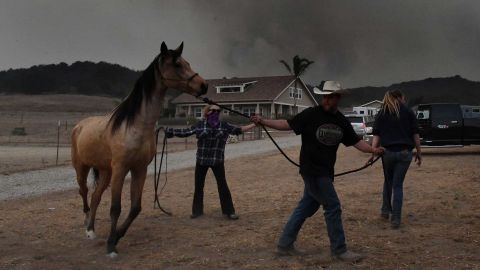 Horses are evacuated from the Laughing Dog Ranch as smoke from the Thomas Fire descends on the area in Ojai, California, on Saturday, December 9.