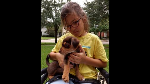 """Avery is fascinated by dogs and babies, and very gentle with them. Her family calls her a """"sweetheart."""""""