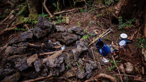 Lost items are scattered on the ground of the forest.