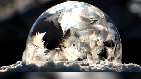 frozen bubble moos