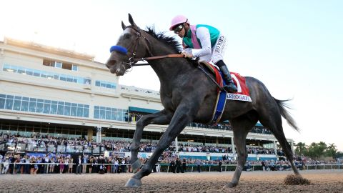 """Arrogate -- named <a href=""""http://edition.cnn.com/2017/01/24/sport/arrogate-longines-worlds-best-racehorse-2016/index.html"""">World's Best Racehorse in 2016</a> -- beat California Chrome in a classic final duel to win the inaugural 2017 Pegasus World Cup, then worth $12 million in total."""