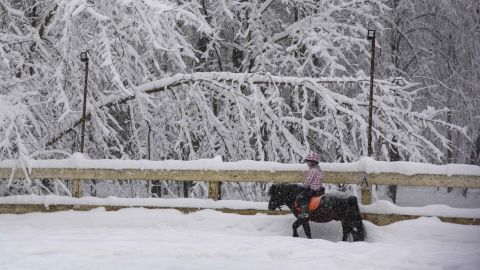 A girl rides a pony in the Botanical Garden in Moscow.