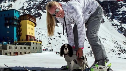 lindsey vonn rescue dogs skiing pyeongchang 2018 winter olympics intl orig_00004701.jpg