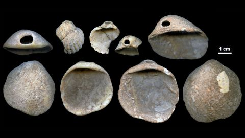 """<a href=""""https://www.cnn.com/2018/02/22/health/neanderthal-art-symbols-cognition-study/index.html"""">These perforated shells</a> were found in Spain's Cueva de los Aviones sea cave and date to between 115,000 and 120,000 years ago. Researchers believe these served as body ornamentation for Neanderthals."""