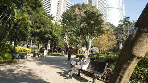 """Hong Kong is greener than most cities, and almost all districts are members of the WHO global network of <a href=""""http://www.who.int/ageing/projects/age_friendly_cities/en/"""" target=""""_blank"""" target=""""_blank"""">age-friendly cities</a>, which encourages the creation of urban spaces supportive of older people. Pictured, Hong Kong Park in the center of the city."""