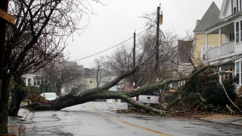 An uprooted tree blocks a residential street after taking down a power line in Swampscott, Massachusetts, on March 2.
