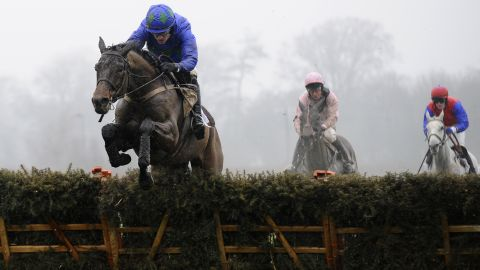 The racing industries of both countries rely heavily on the free movement of horses: Britain for a supply of racehorses, and Ireland for the sale of them.