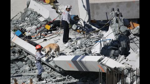 A rescue dog and its handler work at the scene of the collapsed pedestrian bridge. At least six people were killed. Their identities were not immediately released as authorities worked to contact family members, Miami-Dade Police spokesman Alvaro Zabaleta said.