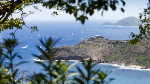 """Antigua Sailing Week's """"absolute DNA is fantastic racing,"""" mixed with a lively, relaxed social scene, says commercial director Alison Sly-Adams."""