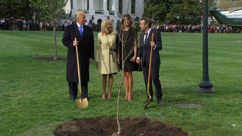 trump macron plant tree