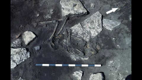 This is just one of 26 individuals found at the site of a fifth-century massacre on the Swedish island of Öland. This adolescent was found lying on his side, which suggests a slower death. Other skeletons found in the homes and streets of the ringfort at Sandby borg show signs of sudden death by blows to the head.