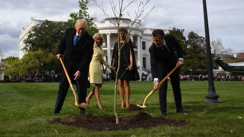 US President Donald Trump and French President Emmanuel Macron plant a tree watched by Trump's wfe Melania and Macron's wife Brigitte on the grounds of the White House April 23, 2018 in Washington,DC. - The tree, a gift from French President Macron, comes from Belleau Woods, near the Marne River in France, where in June 1918 US forces suffered 9,777 casualties, including 1,811 killed in the Belleau Wood battle during World War I. (Photo by JIM WATSON / AFP)        (Photo credit should read JIM WATSON/AFP/Getty Images)
