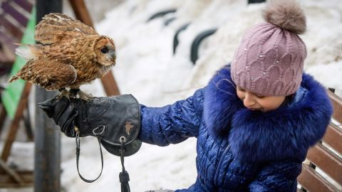 A girl holds her pet owl during the bird day celebrations in a park in Moscow.